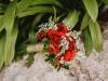 Wedding Bonnie & Teguh-8